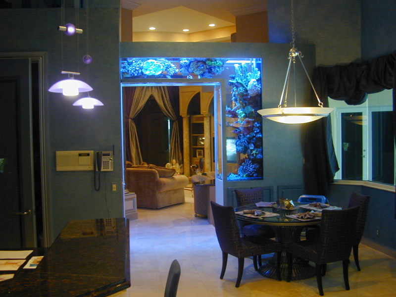 above: both fireplace and doorway aquariums by Seavisions