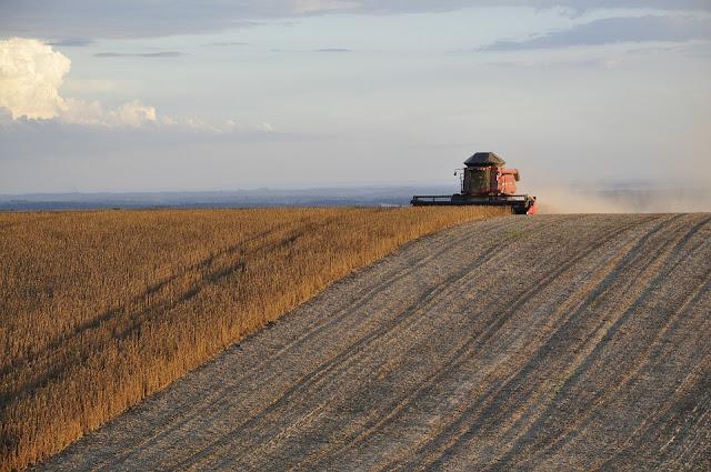 Download Makalah Dan Materi Agroindustri Pertanian