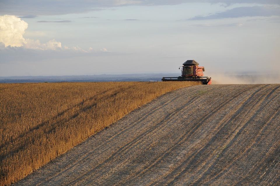 artikel pembangunan pertanian selandia baru