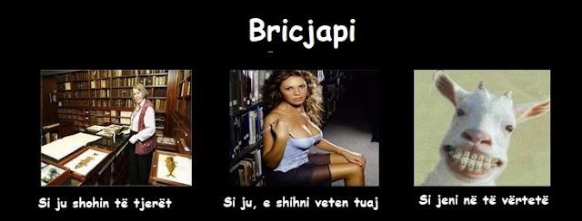 Bricjapi