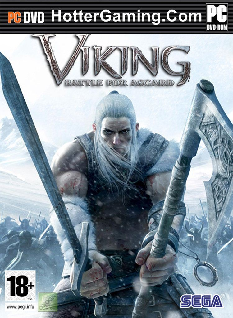 Vikings Video Game