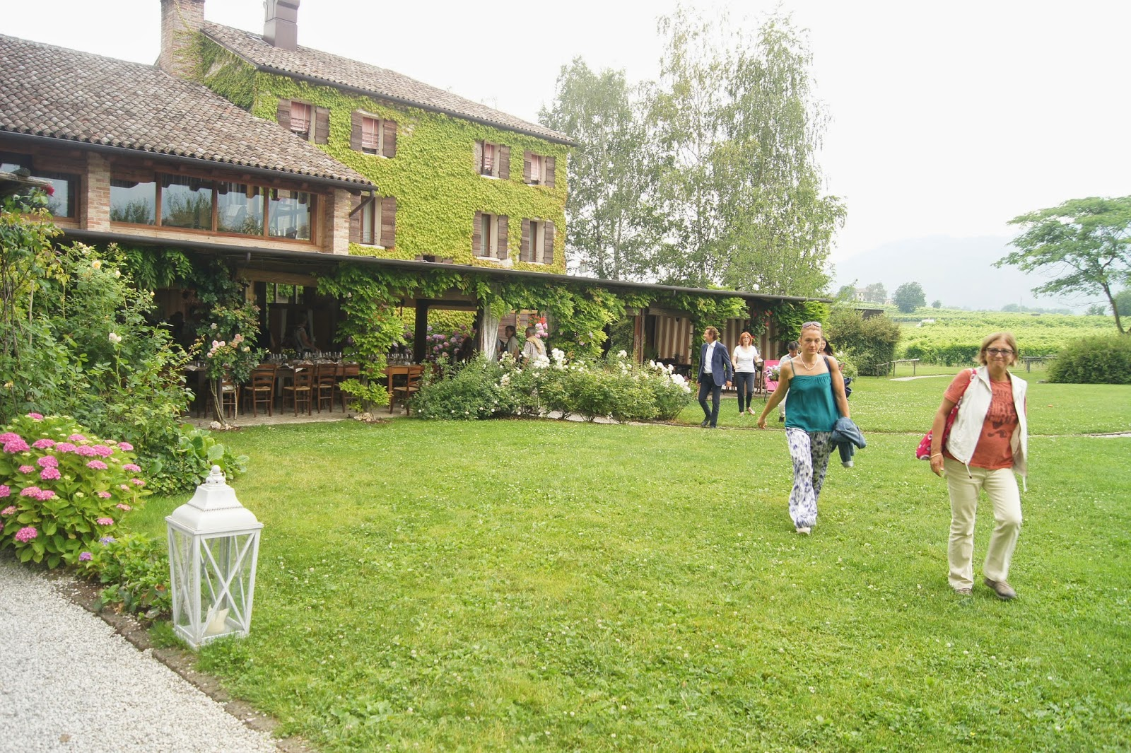 Tenuta Contessa Relais Country House dwightthewinedoctor