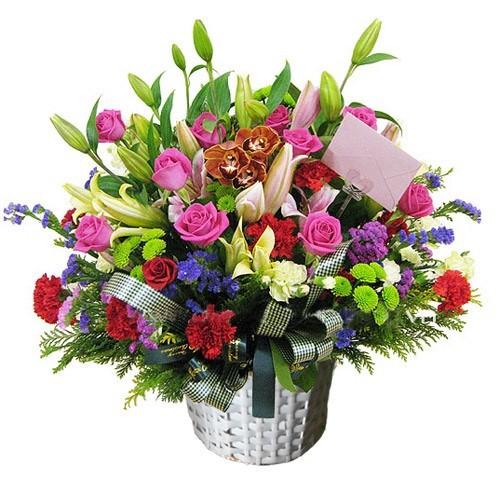 hoa sinh nhat dep nhat 3