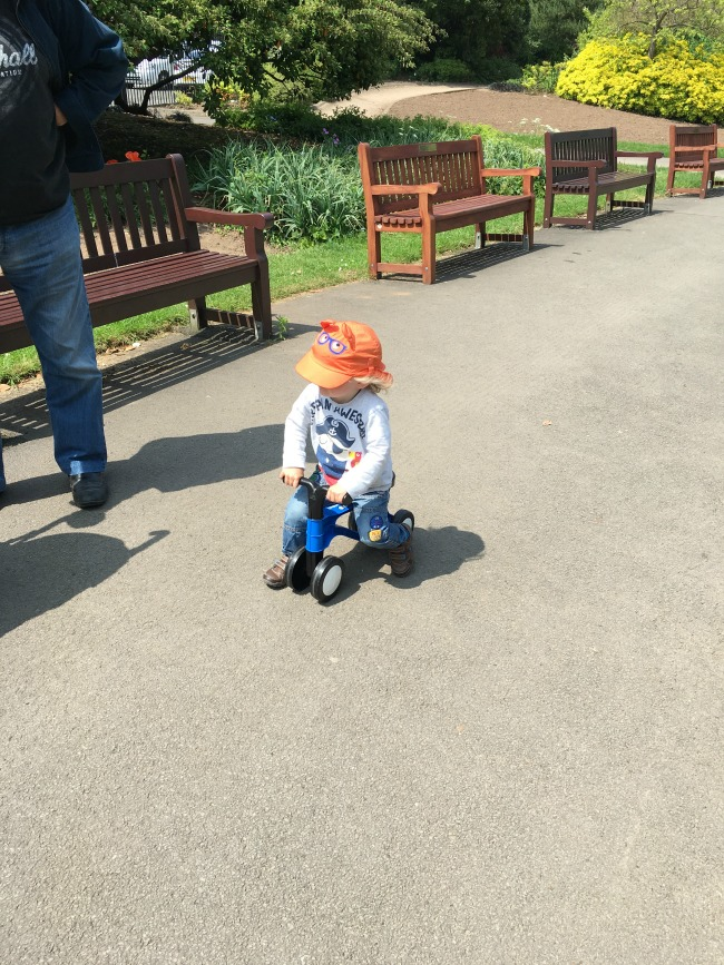toddler-sat-on-toddlerbike2