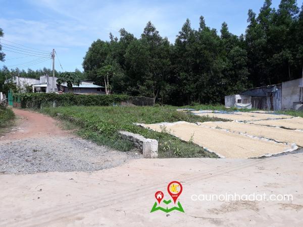 Bán đất ấp Bình Trung xã Tân An huyện Vĩnh Cửu Đồng Nai