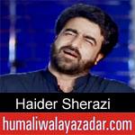 https://www.humaliwalyazadar.com/2019/05/haider-sheerazi-noha-ayyam-e-ali-nohay.html