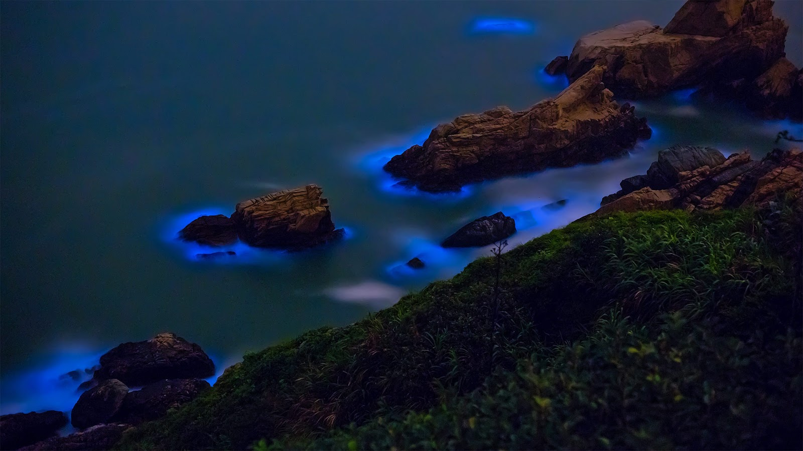 Bioluminescent algae shores Matsu Islands coast Taiwan © Wan Ru Chen/Getty Images