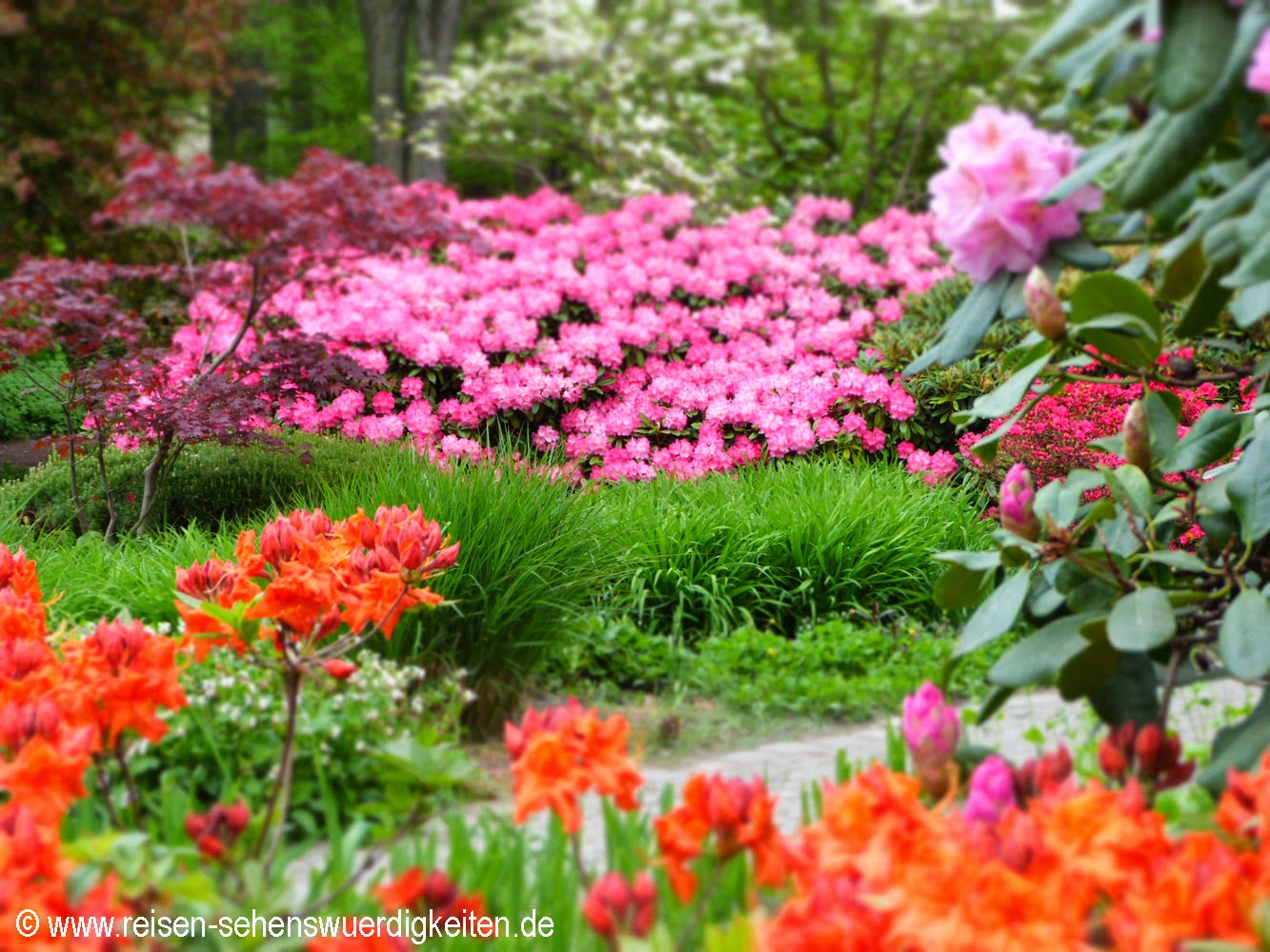 Planten un Blomen Hamburg, schönster Park von Hamburg