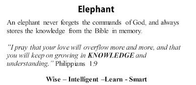 Philippians 1:9 Elephant
