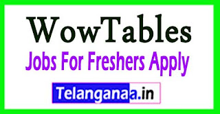 WowTables Recruitment 2017 Jobs For Freshers Apply