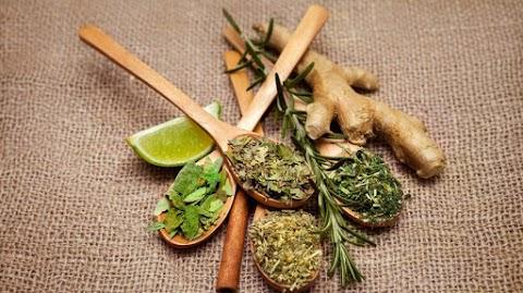 Gyulladás a fájdalom: ezek a gyógynövények segíthetnek