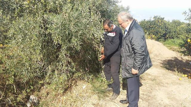 Επίσκεψη Ανδριανού στις πληγείσες περιοχές της Αργολίδας από την πρόσφατη χαλαζόπτωση