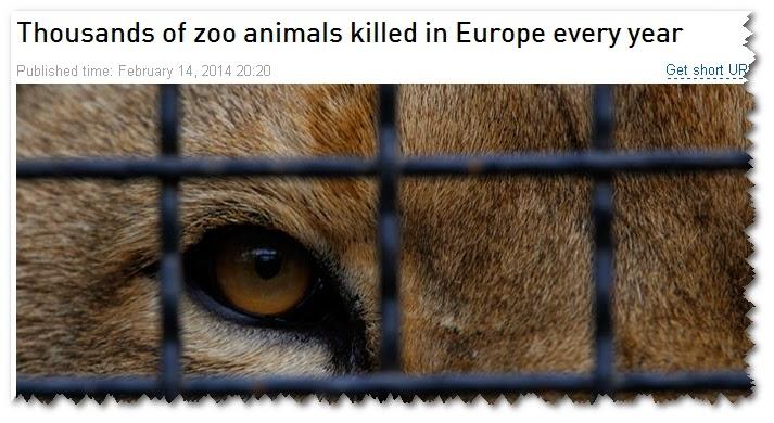 UNDER MATTAN  Tusentals friska djur dödas på EU s Zoo varje år - Den dolda  sanningen om våra djurparker dcce95b1ed9da
