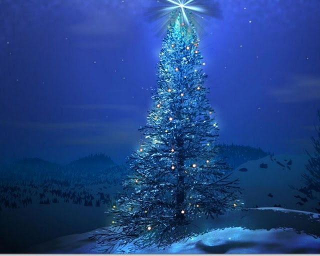 Blue Christmas , christmas tree pictures