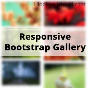 Bootstrap Responsive Image Gallery With Zoom Effects - HindimeJankari
