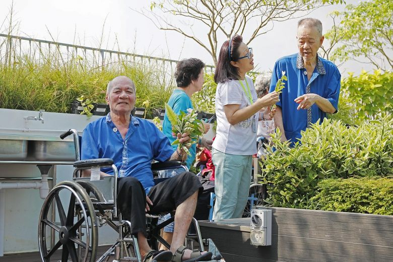 Home's therapeutic garden a boon for residents