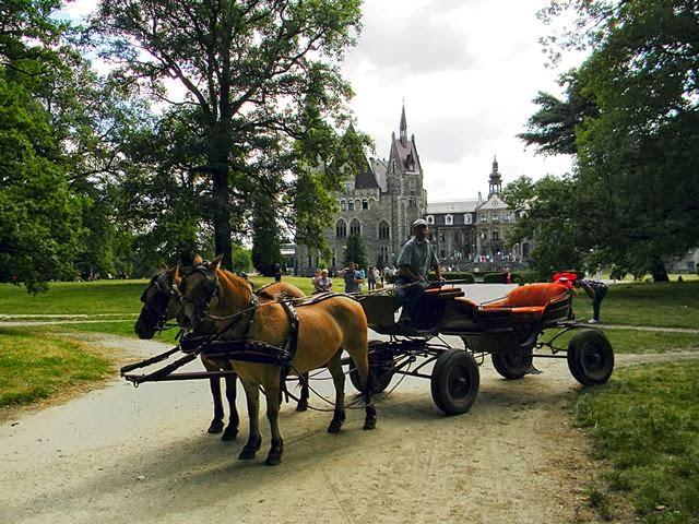 zamek w Mosznej, przejażdżki, atrakcje dla turystów