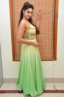Actress Angana Roy Latest Pohtos in Long Dress at Sri Sri Movie Audio Launch 0026