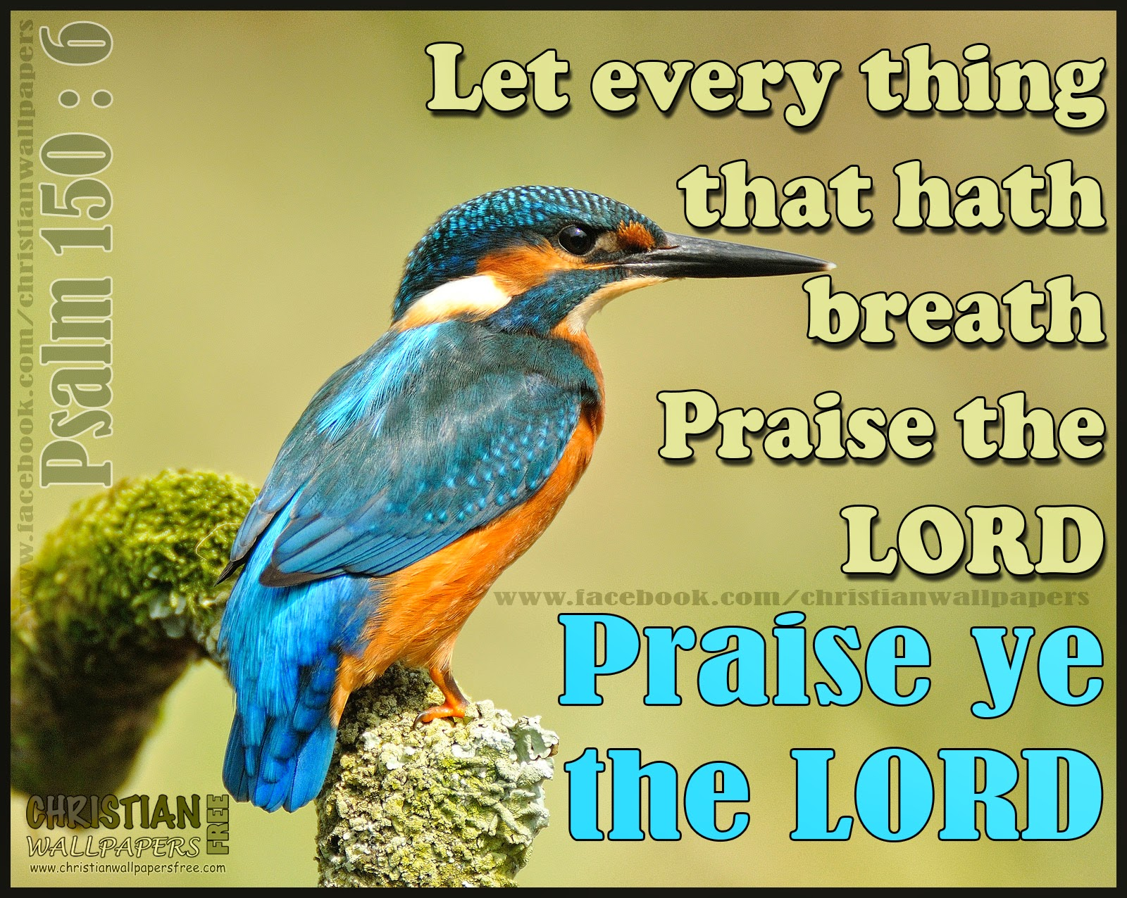 praise the lord with - photo #39