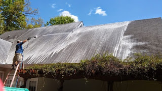 house washing and moss and mould roof treatments