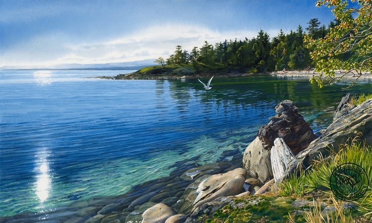 11-Sun-Warmed-Shore-Carol-Evans-Watercolour-Paintings-of-Water-with-Reflections-and-Transparency-www-designstack-co