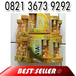 obat ejakulasi dini 082136739292 viagra gold usa herbal alami