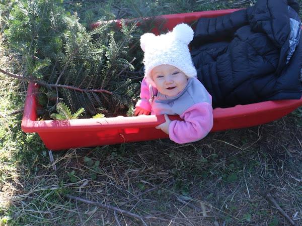Rowan's First Santa Experience