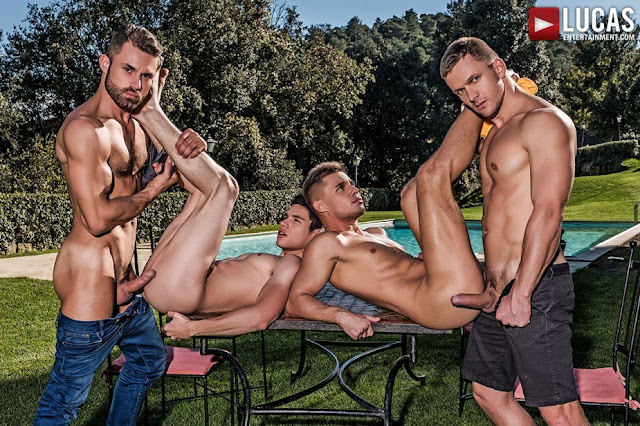 Lucas Entertainment Ass Fucking Alpha Males DVD Gay Porn Big Cocks Gayrado Online Shop