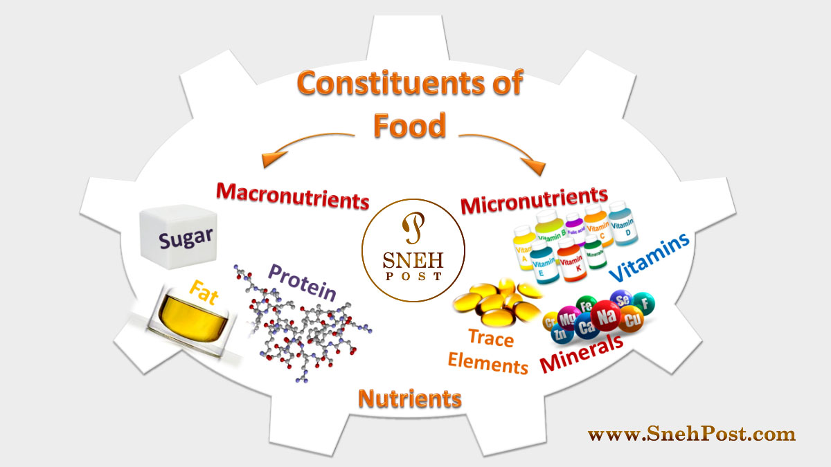 List of nutrients for nutrition: Macronutrients and Micronutrients types and whopping food sources of dietary constituents of food in illustration chart