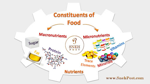 List of Nutrients: 7 Types and Whopping Food Sources