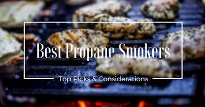 Best Propane Smoker (Nov. 2018)