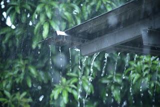 Manfaat air hujan untuk kehiduapan.