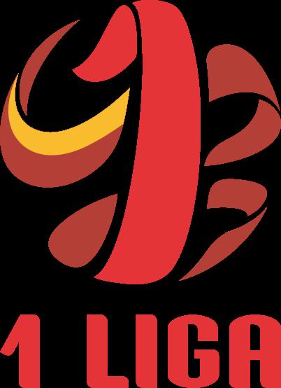 Polen 1 Liga