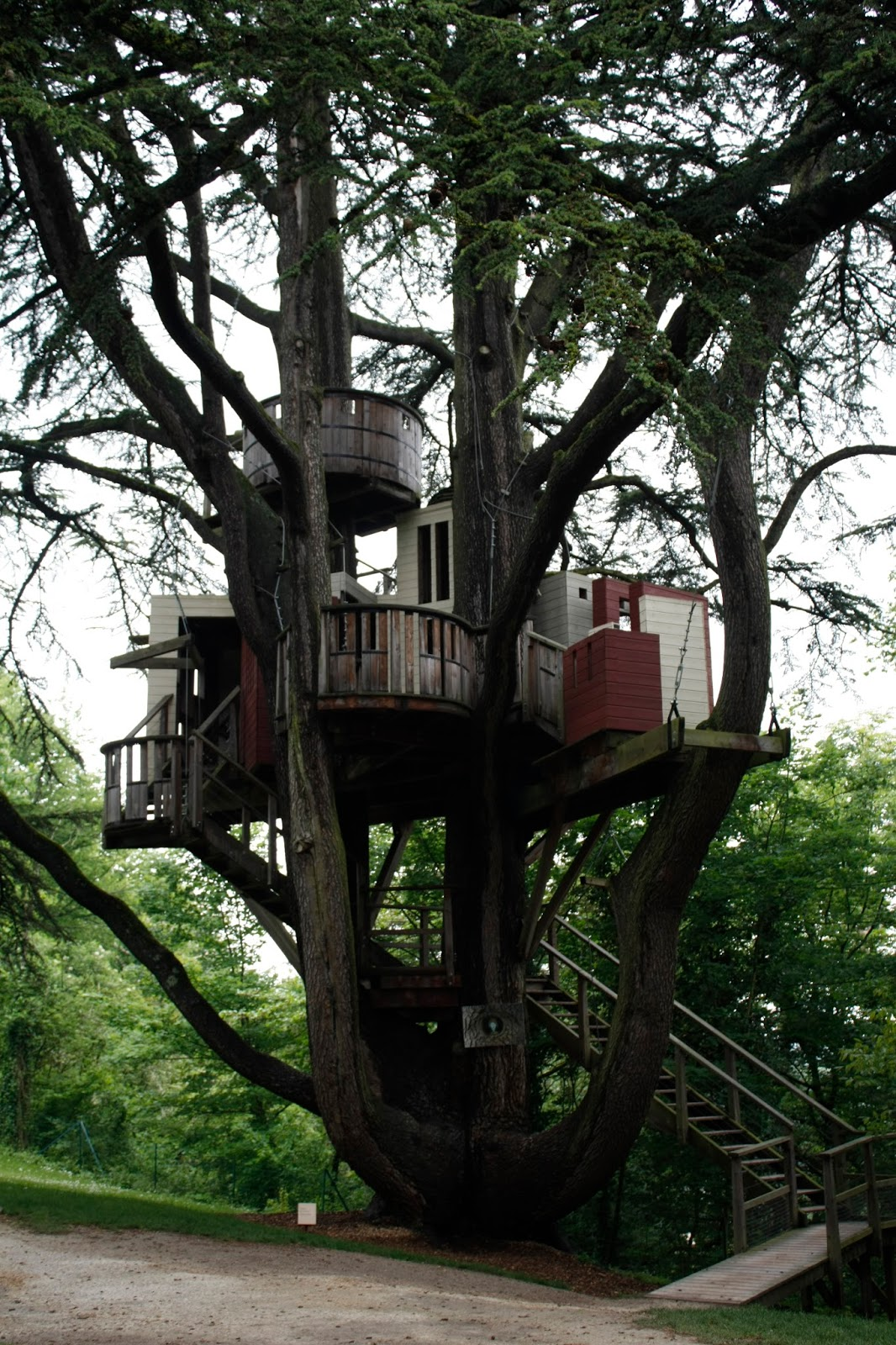Psychocartography THE WORLD'S TOP 15 TREE HOUSES