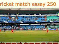 a cricket match essay 250 words