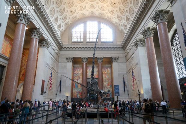 Museo de Historia Natural Nueva York interior