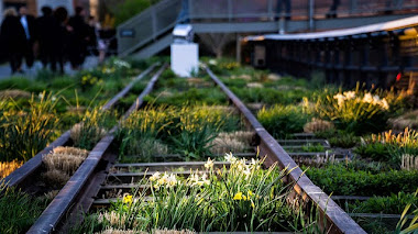 Primavera regalona en The High Line