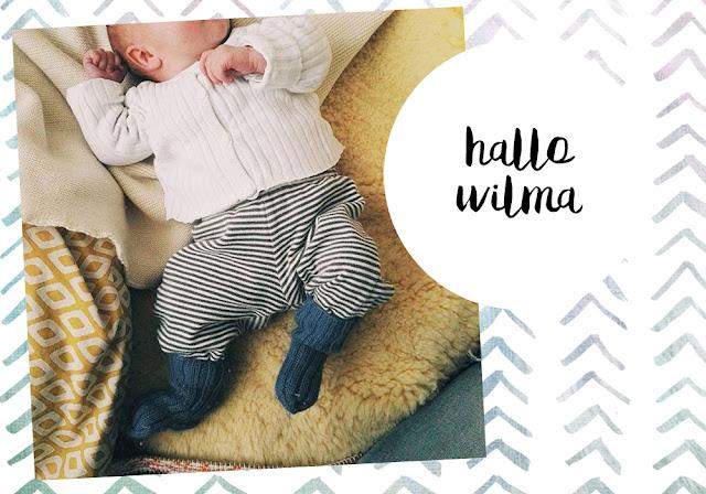 Hallo Wilma Baby newborn kirschküken Frau Kirschvogel welcome