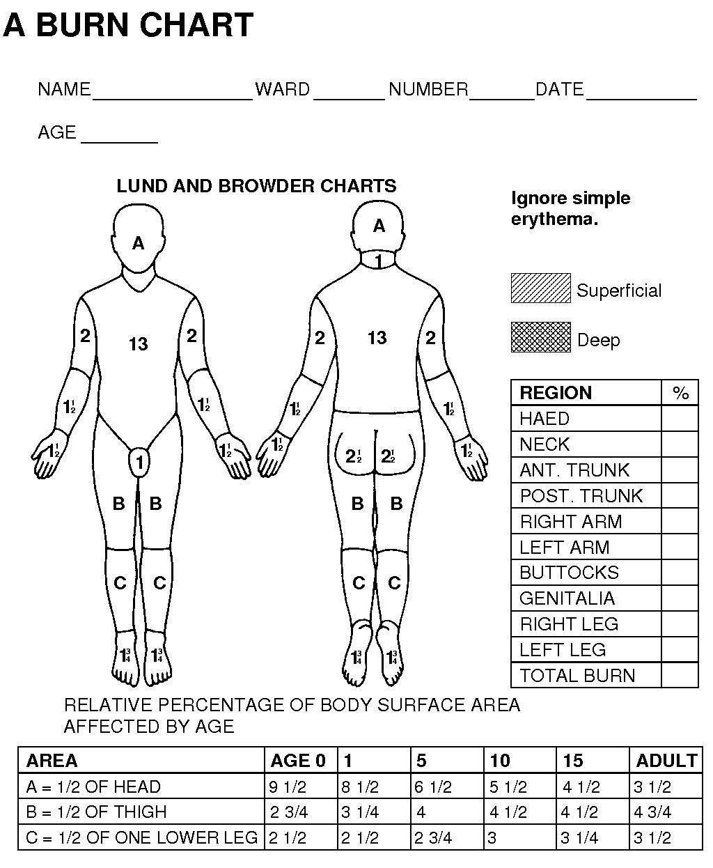 wound assessment diagram electrolux wiring on vacuum lund browder burn chart car interior design