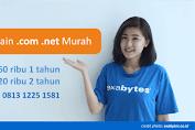 Domain .Com .Net Murah dari Idwebhost