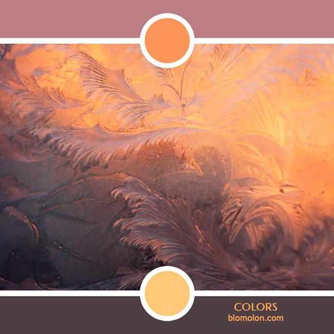 variedad_en_color_color_77