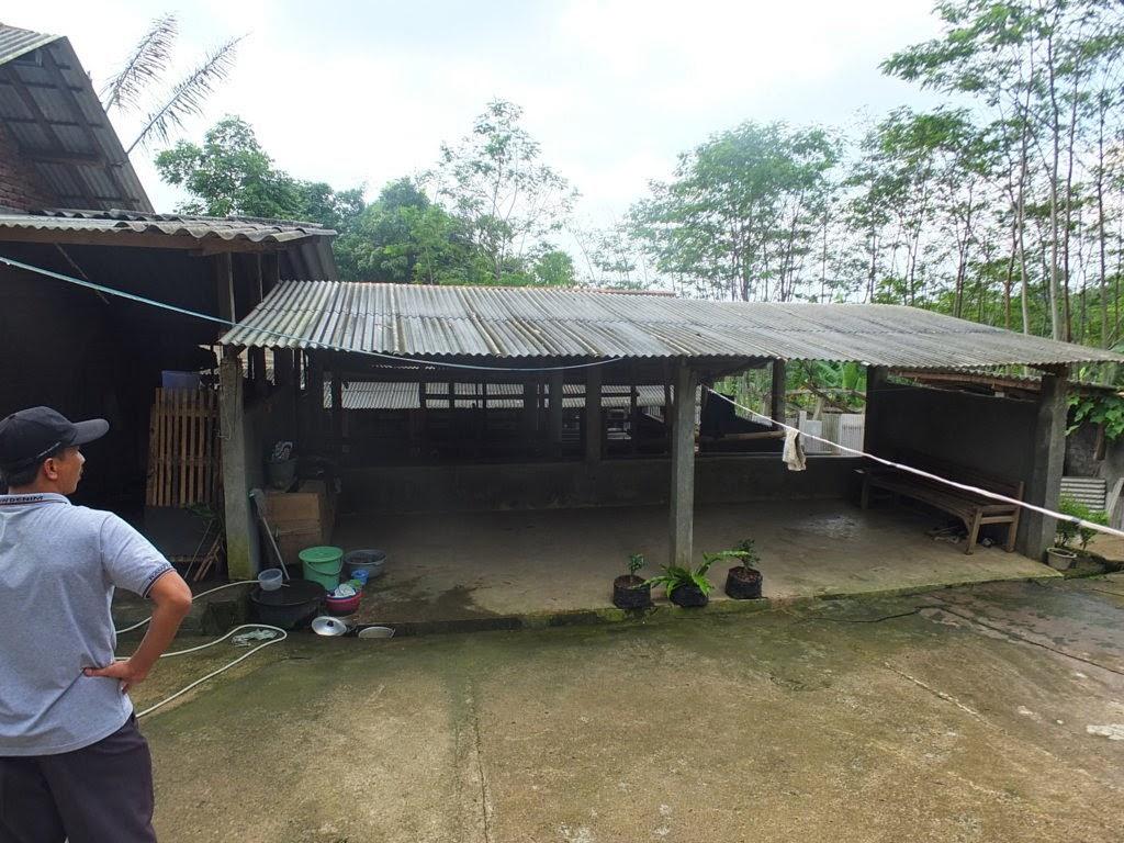 DSCF1812+(FILEminimizer) Jual Tanah Kebun Albasiah 6 HA Di Kec Pacet Jual tanah di cipanas