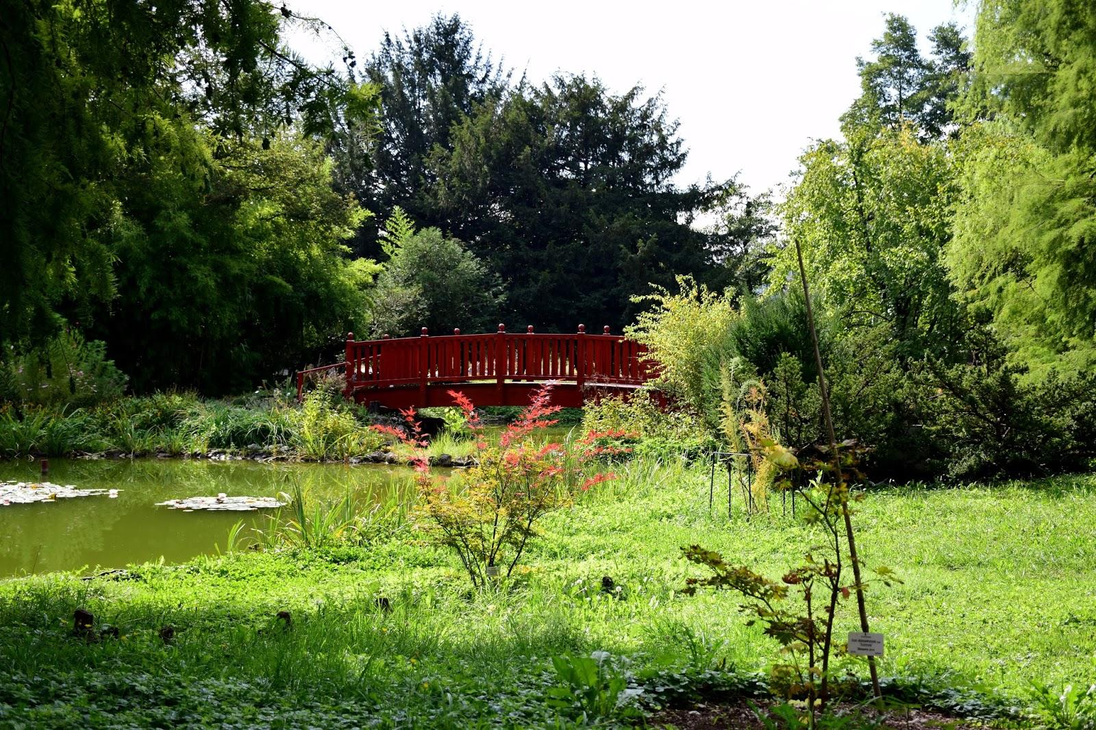 Botanicki Vrt Mirni Kutak U Srcu Velegrada Klajo