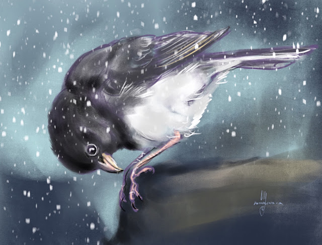 Dark-eyed Junco  bird painting by Artmagenta