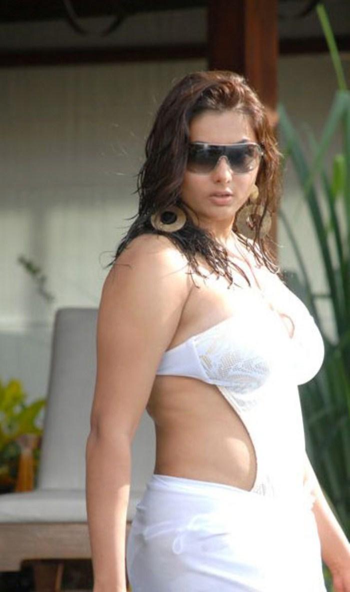 Namitha nude hd images-5724