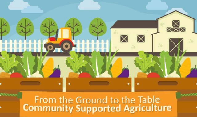 From the Ground to the Table: Community Supported Agriculture