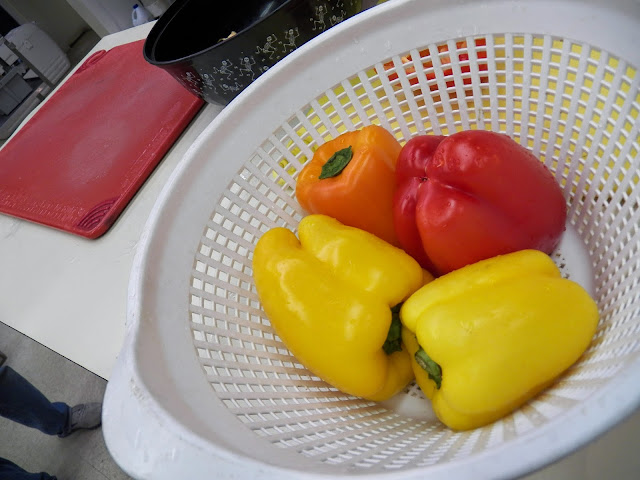 Orange, Yellow and Red Peppers