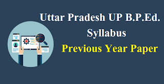 Uttar Pradesh UP B.P.Ed. Syllabus & Previous Year Paper