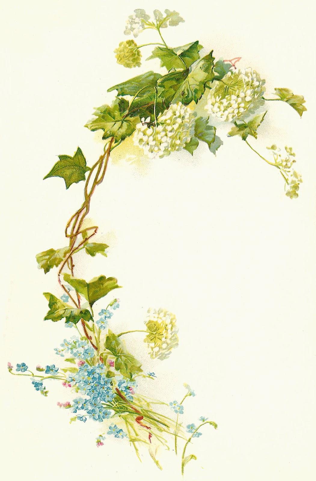 Antique Images: Free Flower Clip Art: Vintage Flower ...