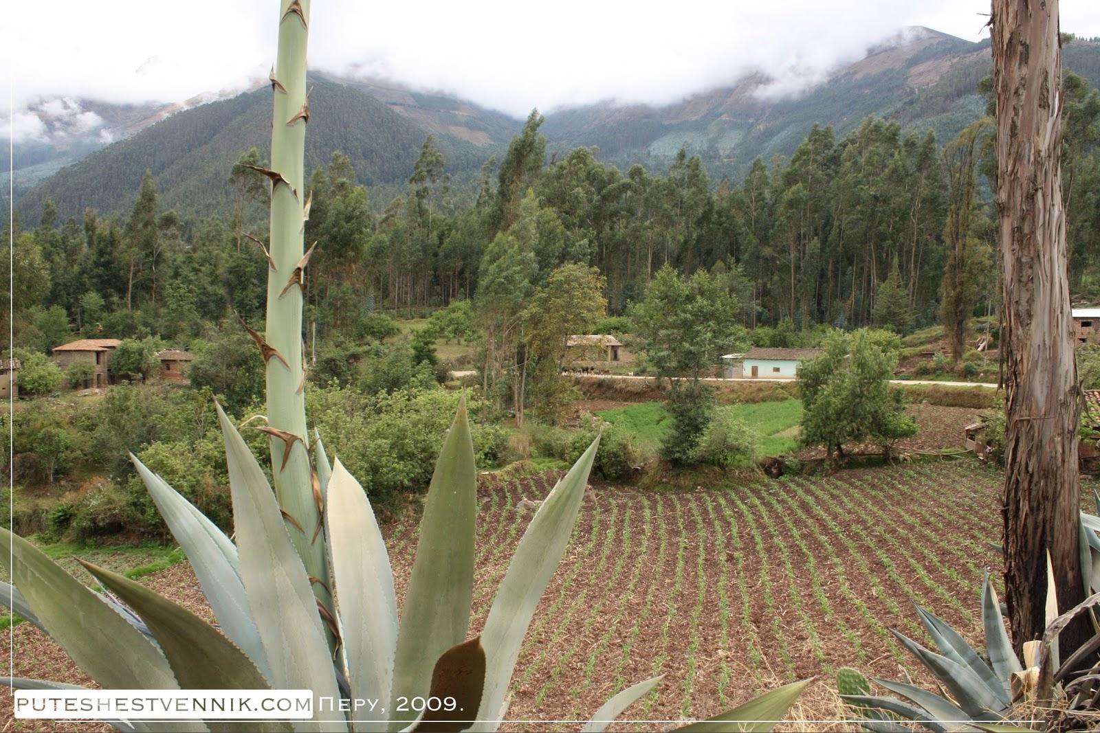 Огород в перуанской деревне